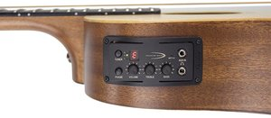 Traveler Guitars AG-105EQ Acoustic w/EQ