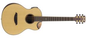 Traveler Guitars CL-3EQ Acoustic w/EQ