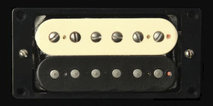 Antq JB Model Zebra Humbucker